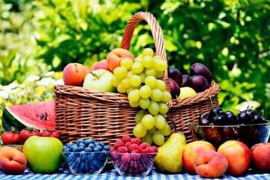 Чернез тривалі заморозки в цьому році Україна залишиться без врожаю абрикос, персиків і слив