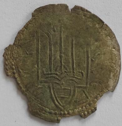 Археологи на місці скарбу на Житомирщині знайшли ще шість монет із зображенням Тризуба і князя Володимира, викарбуваних понад тисячу років тому! (ФОТО)