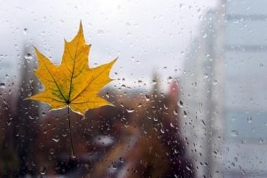 Приходить осінь: заморозки, похолодання і сильний вітер. Завтра різко зміниться погода