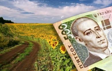 З 2013 року в Україні безкоштовно приватизували більше 700 тисяч га землі. Це як невелика європейська країна — голова Держгеокадастру