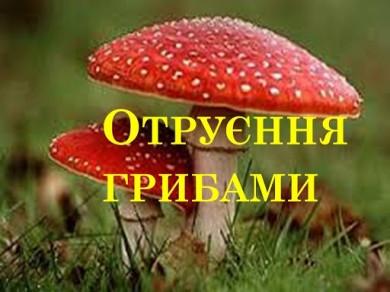 Через отруєння грибами до лікарні госпіталізували двох буковинців