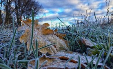 Нічні морози та мокрий сніг: синоптики розповіли, якою буде погода цього тижня