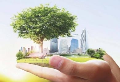Генсек ООН закликає всі країни ввести надзвичайний кліматичний стан через глобальне потепління на планеті