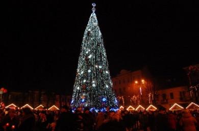 Новорічну ялинку у Чернівцях офіційно відкриють 19 грудня