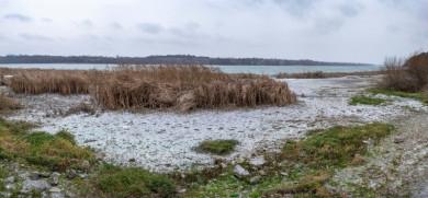 «Ситуація погіршується»: фахівці показали негативні наслідки роботи ГЕС на Буковині