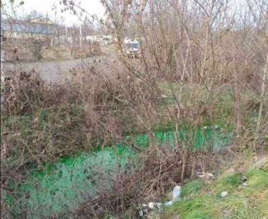 Зелена вода: на Калічанці виявили забруднений потічок (ФОТОФАКТ)