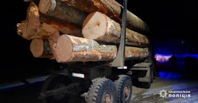 Селянин з Лопушної може сісти на три роки за незакону вирубку та перевезення деревини (фото)