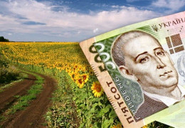 Земельна реформа у Чернівецькій області: як дати землі справжнього господаря