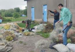 Чернівецький рибоохоронний патруль знищив на Дністрі понад 3 км браконьєрських сіток