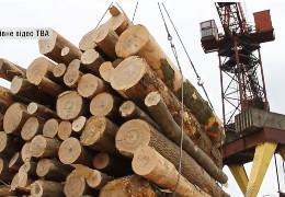 Картельна змова буковинських лісгоспів: кому вигідно нищити деревопереробну галузь Буковини