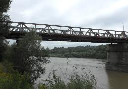 У Чернівцях рівень води в Пруті підвищився більш ніж на пів метра: загрози підтоплень немає