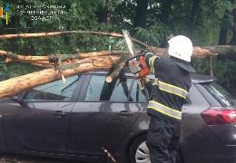 На Буковині рятувальники надають допомогу громадянам з ліквідації наслідків негоди