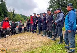 На Вижниччині вже шостий день поспіль сотні людей шукають та не можуть знайти зниклого у лісі грибника