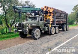 У буковинських Карпатах далі нищать ліси. Поліція зафіксувала нові випадки перевезення та зберігання незаконно зрубаної деревини