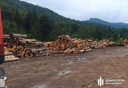 ДБР завершило досудове розслідування щодо незаконних порубок лісу у Сторожинецькому і Путильському лісових господарствах
