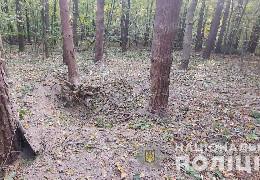 У буковинському лісі загинув житель Рівненщини, який підірвався на знайденому артелерійському снаряді