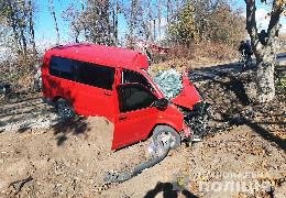 У Погорилівці важко травмувався чоловік, який на авто врізався в дерево