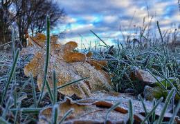 Синоптики спрогнозували погоду в Україні у листопаді